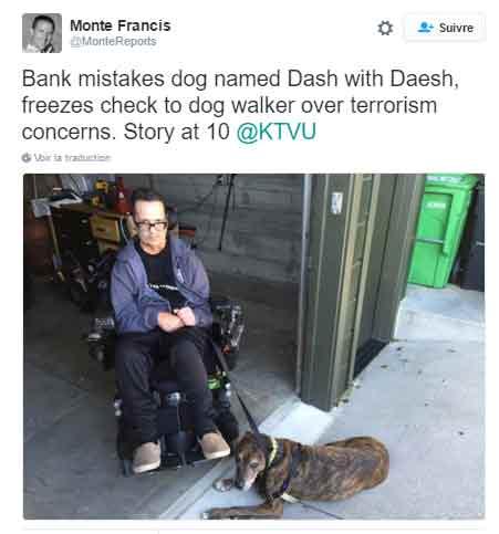 dach-chien