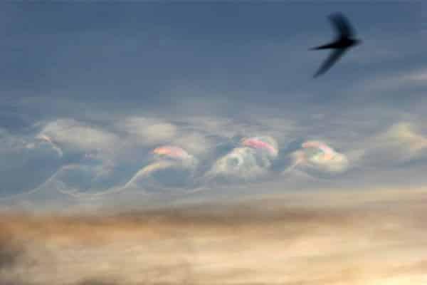 nuage 2
