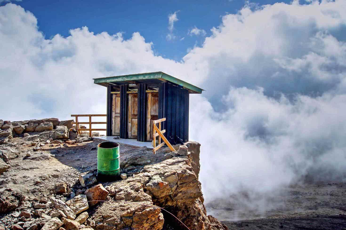 À 4 600 mètres d'altitude, sur les flancs du mont Kilimandjaro en Tanzanie