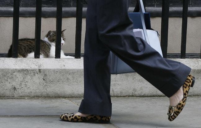 Theresa May shoes 3