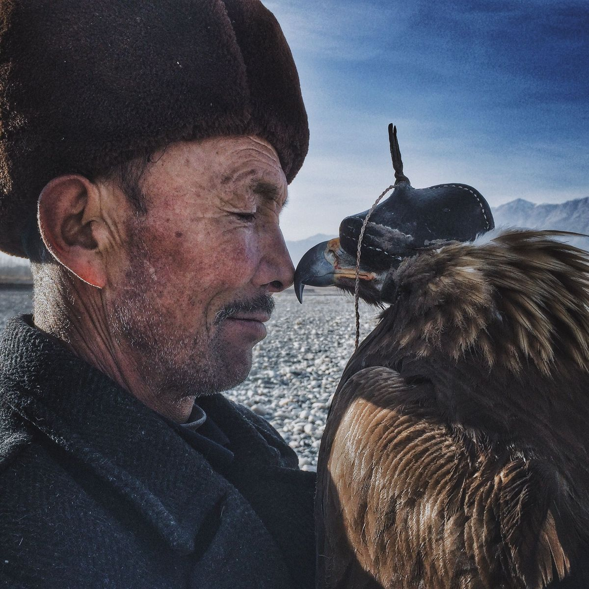 iPhone Photography Awards 1