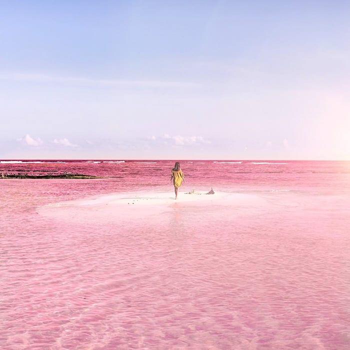 Mexico's pink lagoon 1