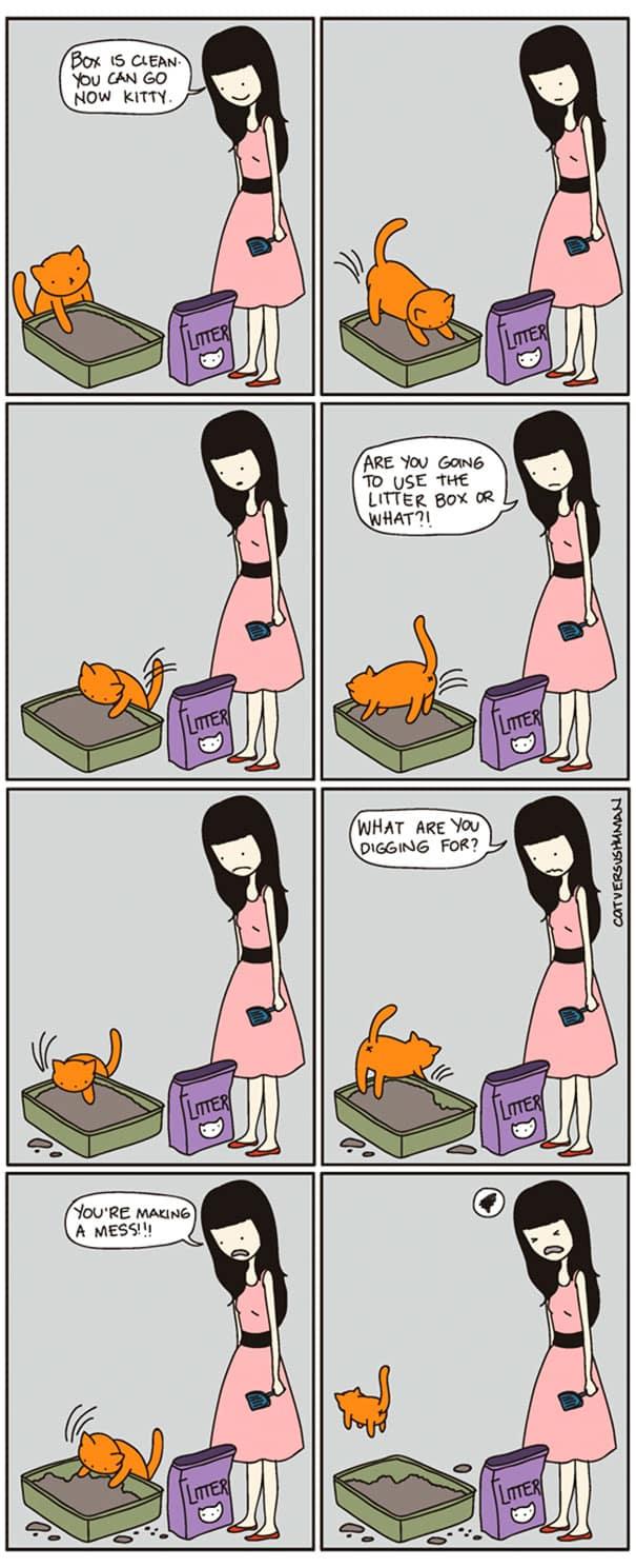 vie avec chat 14