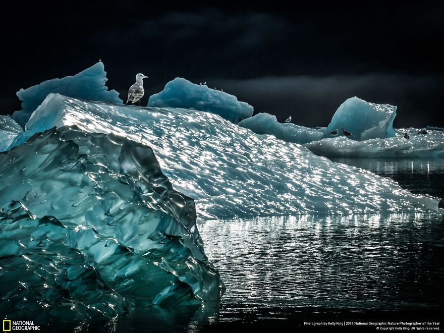 national-geographic-8