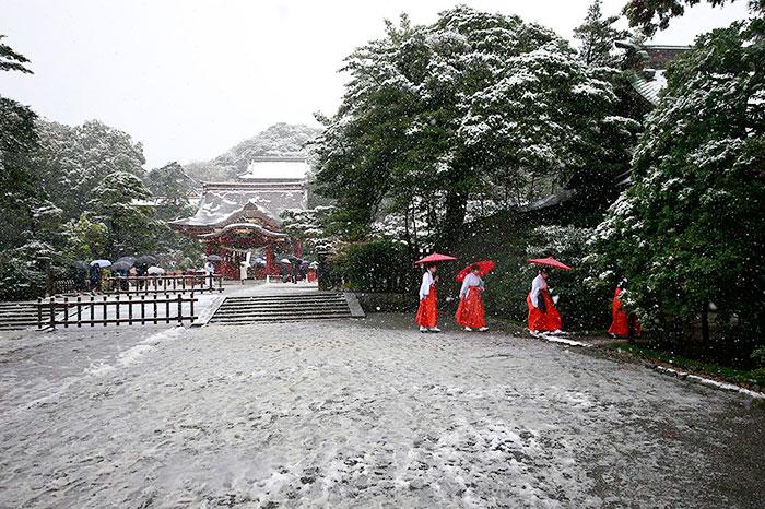 tokyo-sous-la-neige-12