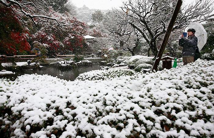 tokyo-sous-la-neige-13