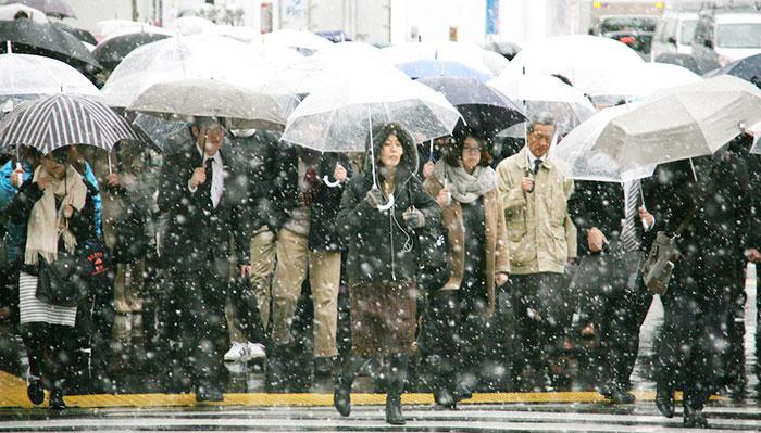 tokyo-sous-la-neige-14