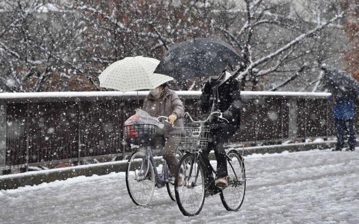 tokyo-sous-la-neige-17