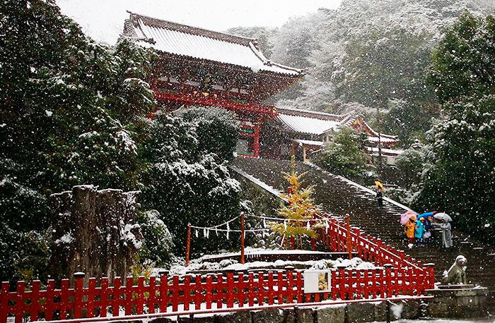 tokyo-sous-la-neige-19