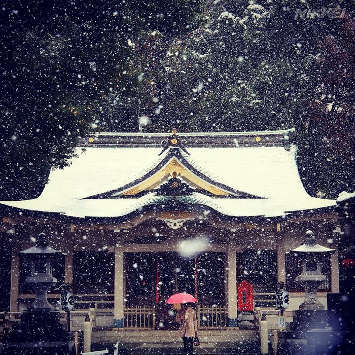 tokyo-sous-la-neige-2