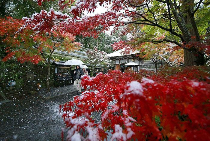 tokyo-sous-la-neige-20