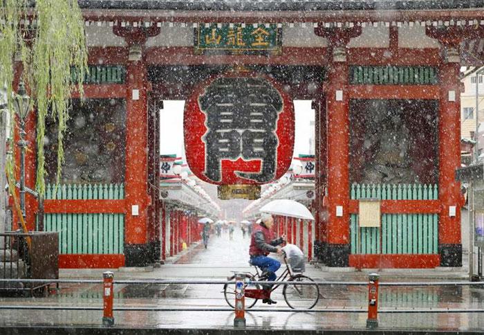 tokyo-sous-la-neige-21