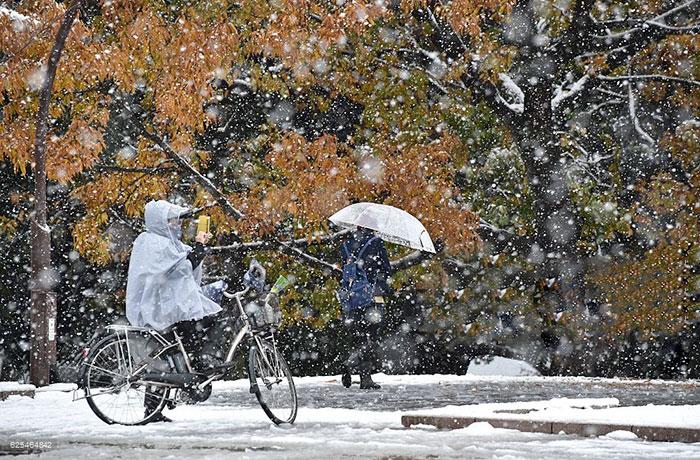 tokyo-sous-la-neige-22