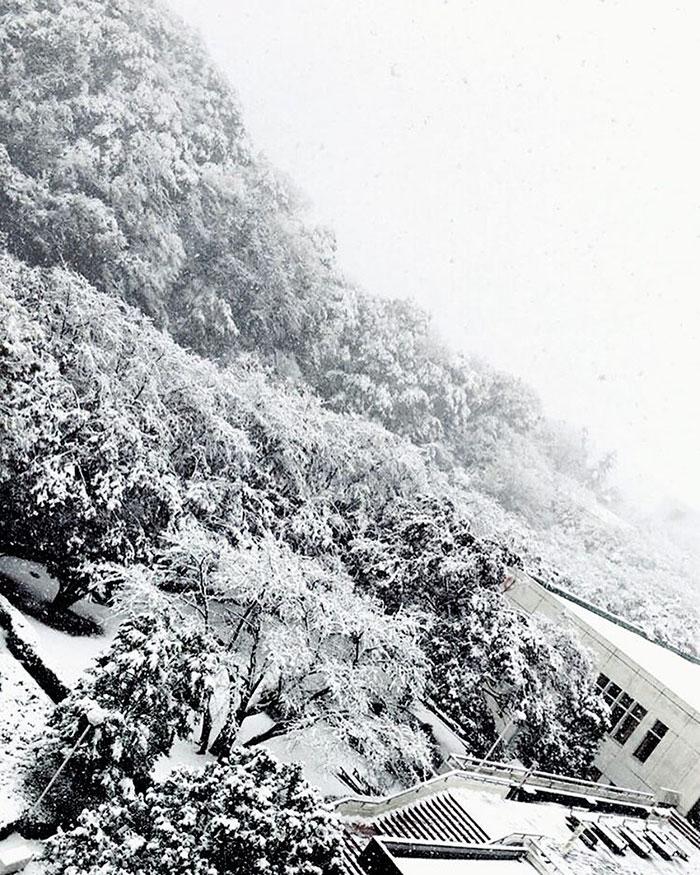 tokyo-sous-la-neige-25