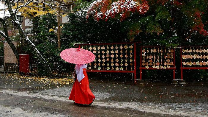 tokyo-sous-la-neige-3