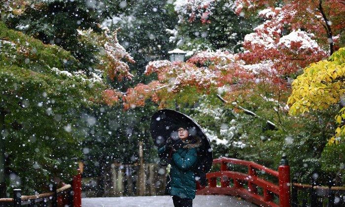 tokyo-sous-la-neige-4