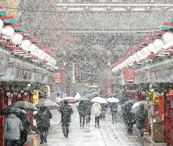 tokyo-sous-la-neige-5