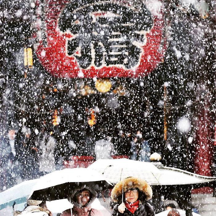 tokyo-sous-la-neige-8