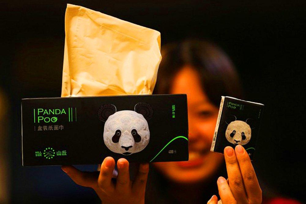 Les excréments de panda recyclés en papier toilette