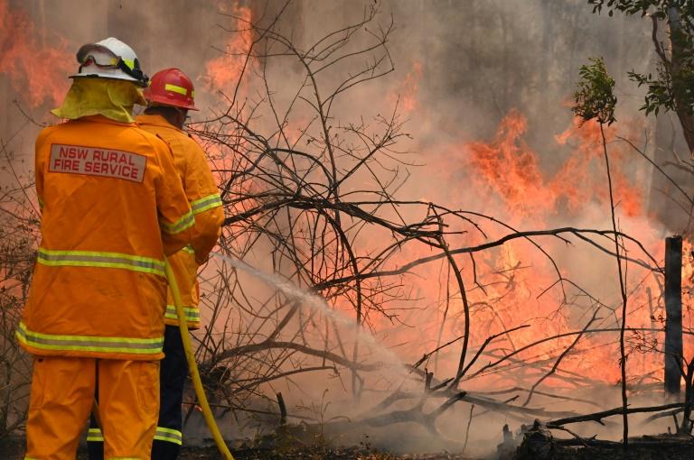 Des pompiers combattant un des nombreux feux de brousse que connaît l'Australie cette année, le 9 novembre 2019