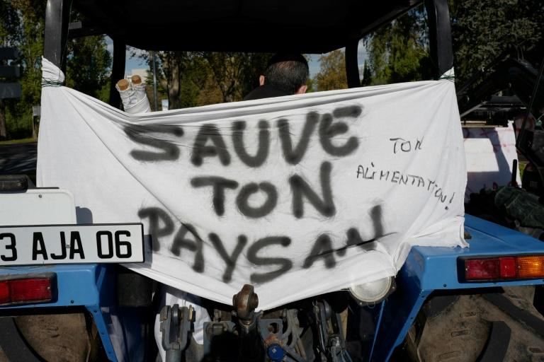 Manifestation d'agriculteurs pour dénoncer leurs conditions de vie, à Nice le 5 novembre 2019