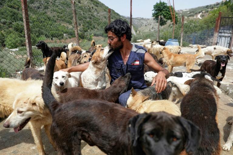 Joe Okdjian, fondateur du refuge pour animaux Woof N' Wags, à Kfar Chellal (Liban) le 30 avril 2021