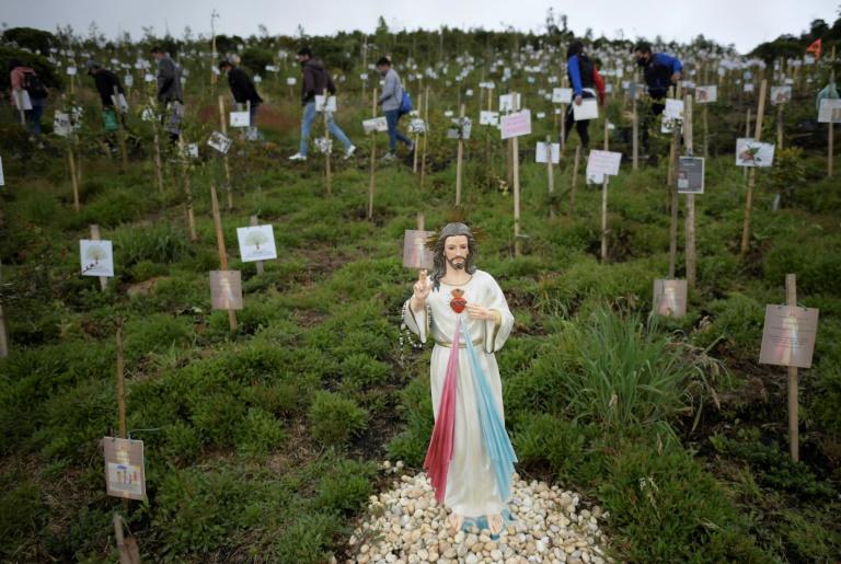En Colombie, des proches de victimes du coronavirus dispersent leurs cendres dans un trou avant d'y planter un arbre dans la réserve naturelle de Paramo de Guerrero, près de Bogota, le 21 juin 2021